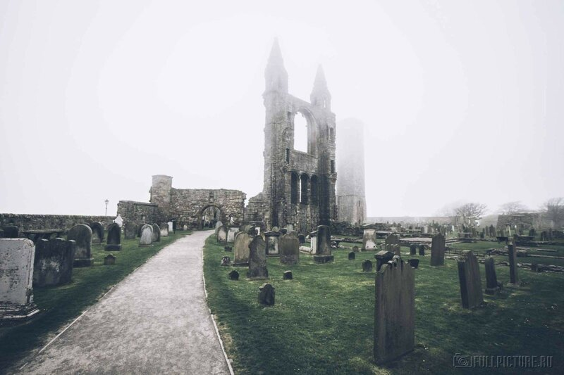 13 самых удивительных кладбищ в мире-14 фото-