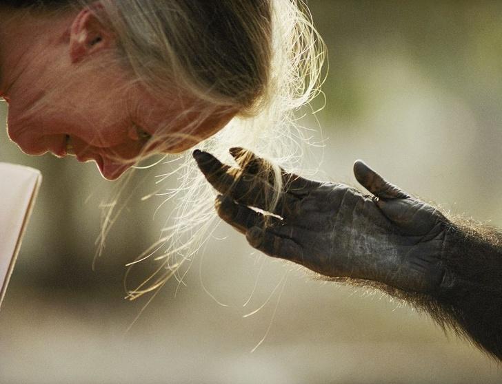 25 волнующих снимков National Geographic, на которых время остановилось