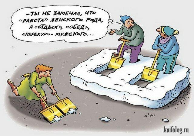 Социальная карикатура                      Интересное