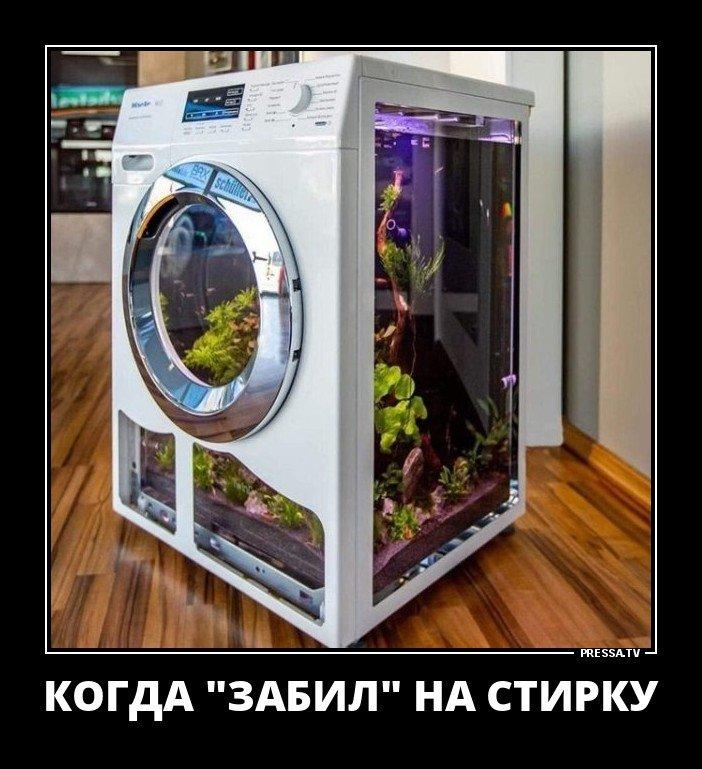 Уморительные демотиваторы на понедельник-29 фото-