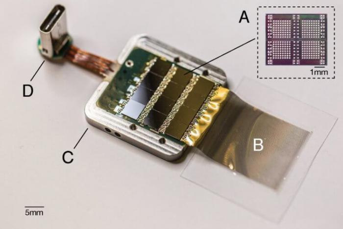 Компания Илона Маска Neuralink показала, как человек сможет управлять компьютерами силой мысли -11 фото + видео-
