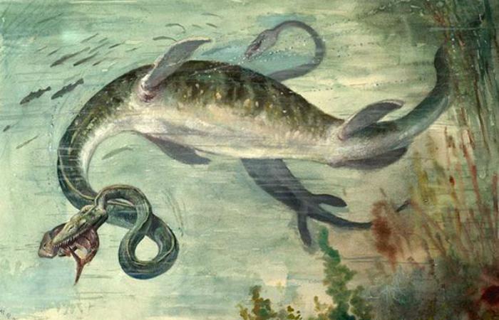Монстры, когда-то правившие океаном Интересное
