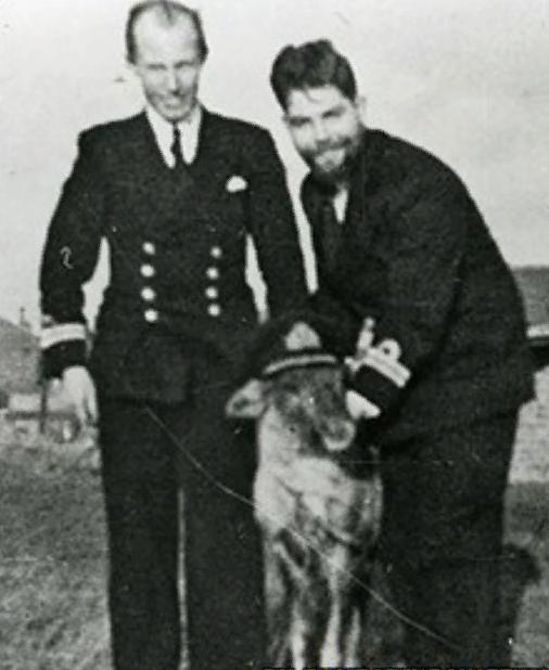 Северный олень, который «служил» на подводной лодке в течение 6 недель                      Интересное