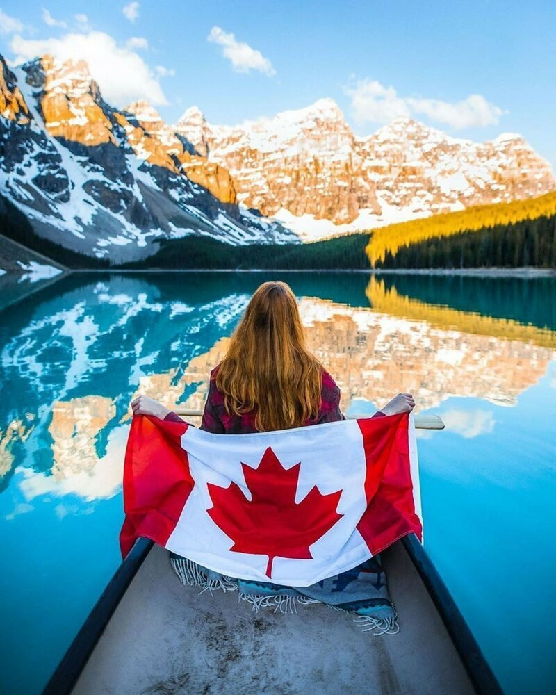 Тем временем в Канаде                      Интересное