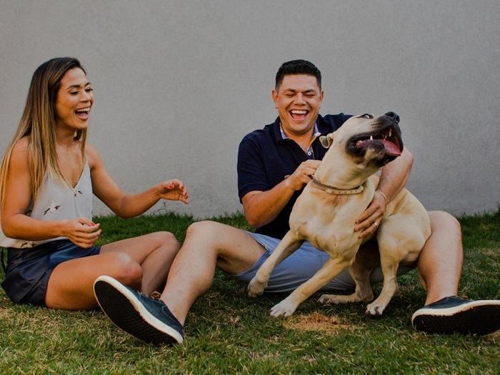 Парочка хотела сделать фотосессию с собакой, но задача оказалась нелегкой: неудержимый питомец решил проявить креативность (фото)