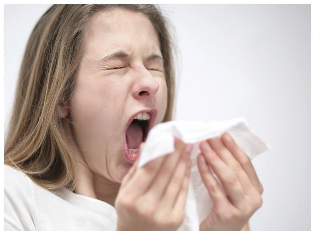 Будьте здоровы: неожиданные факты о чихании, о которых нам не рассказывали в школе Интересное