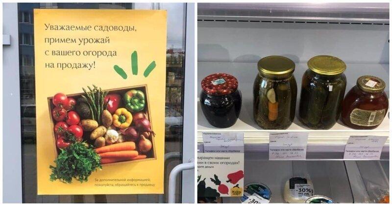 Уральский бизнесмен поможет пенсионерам продавать через магазин овощи и закрутки-3 фото-