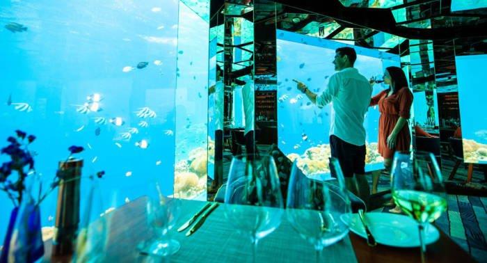 Воплощение мечты в подводном ресторане на Мальдивах – ласты и маска не понадобятся