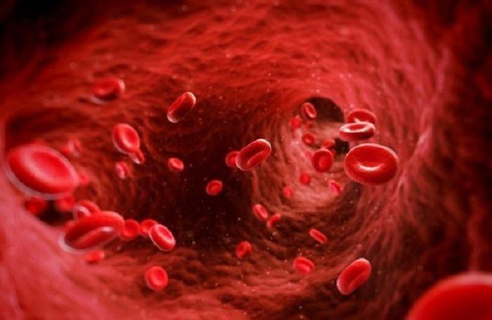 Определив группу крови, можно узнать о судьбе человека