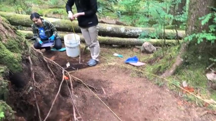 Сюрпризы природы: в дебрях Британской Колумбии была найдена затерянная японская деревня