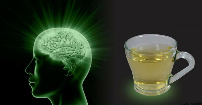 Если вы пьете чай, то обязаны знать, что он делает с вашим мозгом -4 фото-