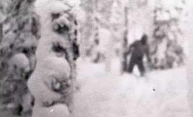 Перевал Дятлова: ученые проверили теорию о снежном человеке (3 фото + видео)