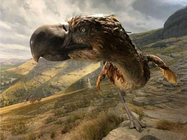 Ученые обнаружили, что за детьми древних людей охотились гигантские птицы (1 фото)