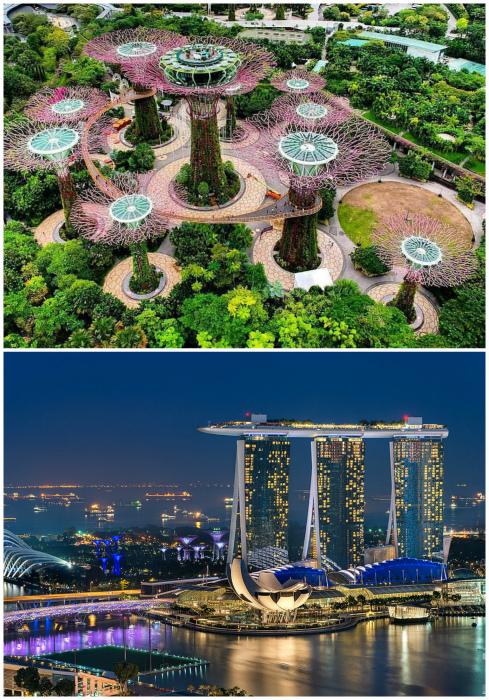 Удивительные отличительные особенности Сингапура
