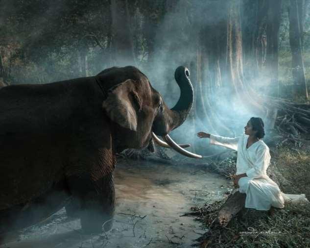 Замечательные снимки Рариндра Пракарса  Интересное