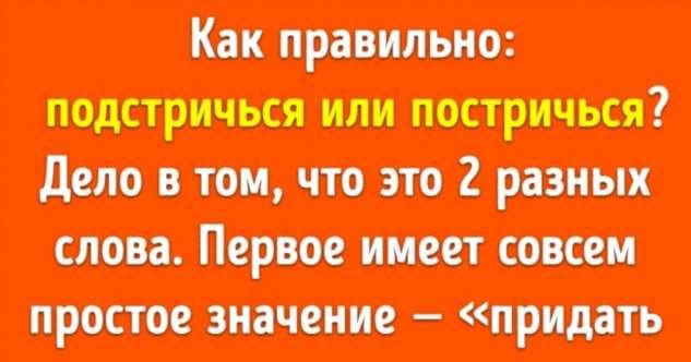 Автор книги о русском языке рассказала, какие нелепые ошибки мы совершаем каждый день Интересное