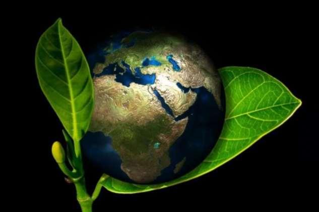 Можно ли превратить половину планеты в заповедник?  Интересное