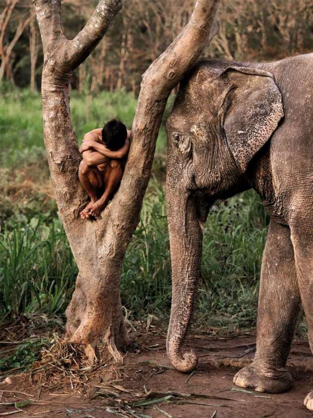 Лучшие фотографии легендарного американского фотографа Стива МакКарри