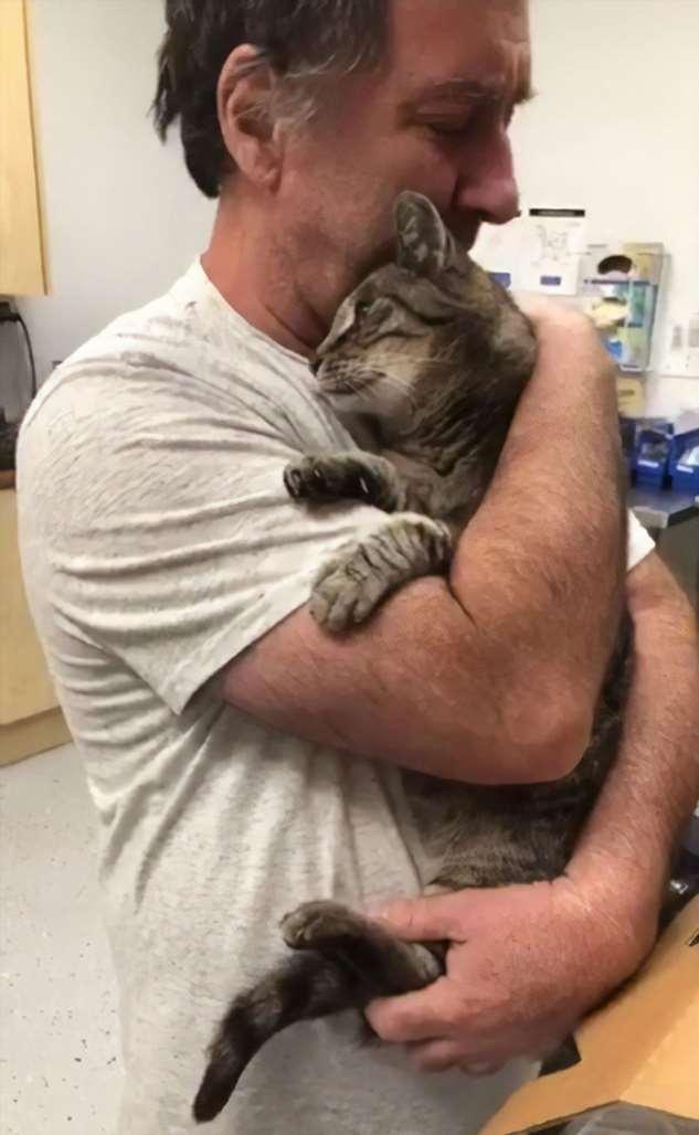 Мужчина и пропавший кот встретились через семь лет! Интересное
