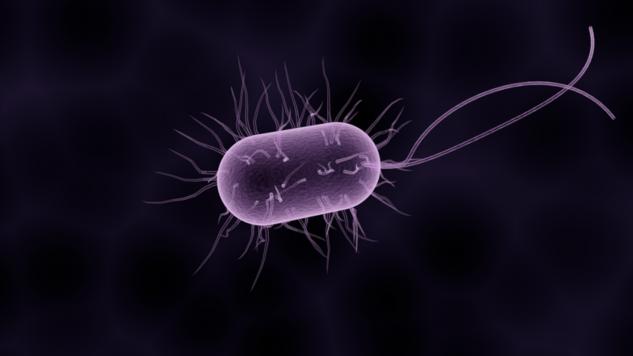 Новый китайский коронавирус пневмонии выходит из под контроля: как защитить себя  Интересное