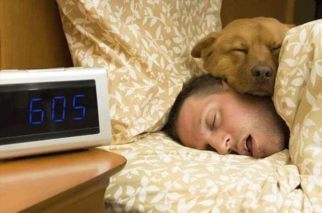 Почему трудно просыпаться по утрам?