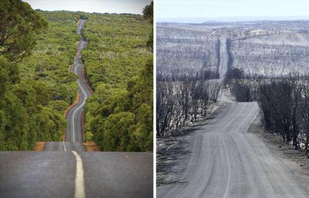 До и после пожаров в Австралии