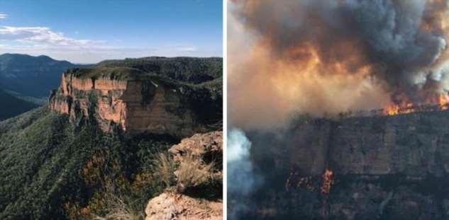 До и после пожаров в Австралии после, Австралия, Зеландия, пожаров, Австралии, природы, дикой, послеПарк, Мого2, берегОстров, вымытый, пепел, обугленный, нижнем, мусор, АвстралииЧерный, кенгуруГолубые, Пламя, домовТатра, более
