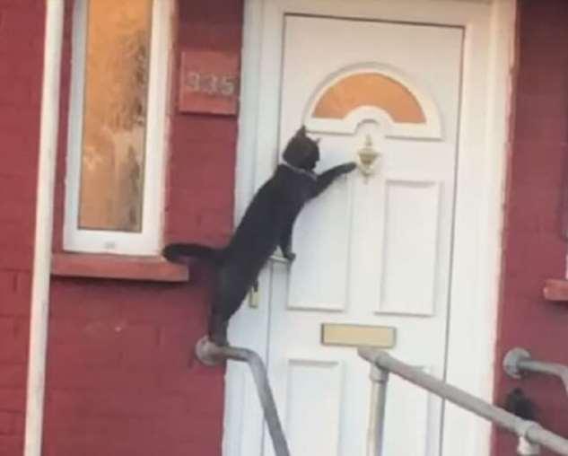 Откройте двери