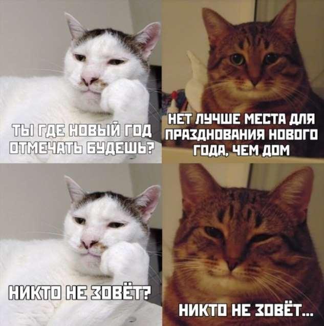 Мемы и картинки — Новогодний выпуск юмор