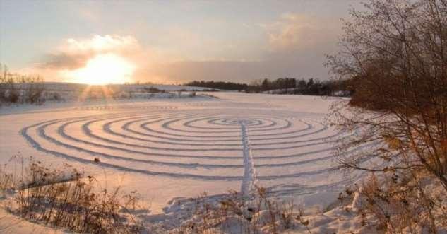 Снежная живопись экологической активистки  Интересное