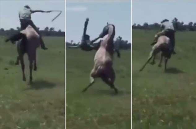 Прокатился с ветерком: конь эффектно скинул своего наездника  Интересное
