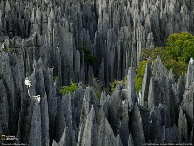 Поразительные виды Земли Интересное