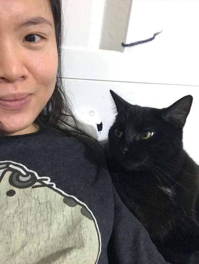 20+ черных котов, хозяева которых плевали на все суеверия и приметы Интересное