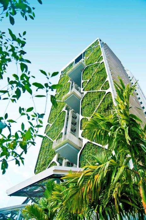 Гигантский вертикальный сад Сингапура – идеальный «живой» кондиционер и архитектурный шедевр House», «Tree, Сингапур, комплекса, только, комплекс, растений, электроэнергии, которые, территории, людей, города, страны, воздуха, можно, окружающей, жилого, вертикальный, больше, Гиннеса