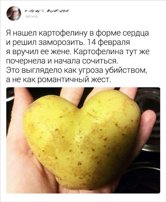 20+ человек, которые ненавидят День всех влюбленных, и у них есть на это веские причины