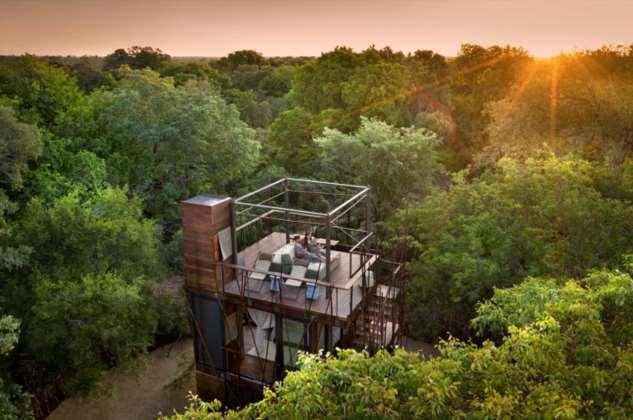 В заповеднике ЮАР можно отдохнуть в домике на дереве в окружении …львов, тигров и носорогов