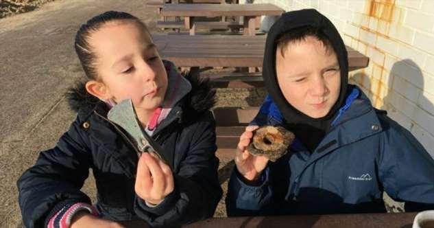 Девочка нашла на пляже топор бронзового века  Интересное