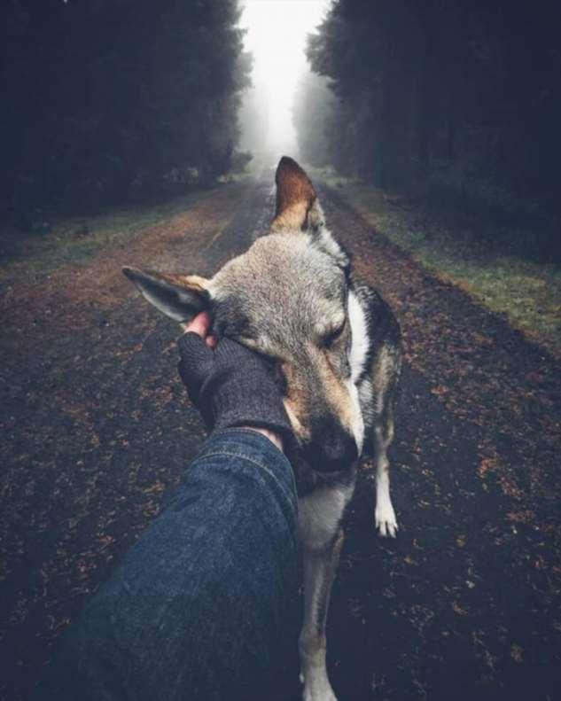 Индейское поверье: Почему нельзя обижать зверей? Интересное