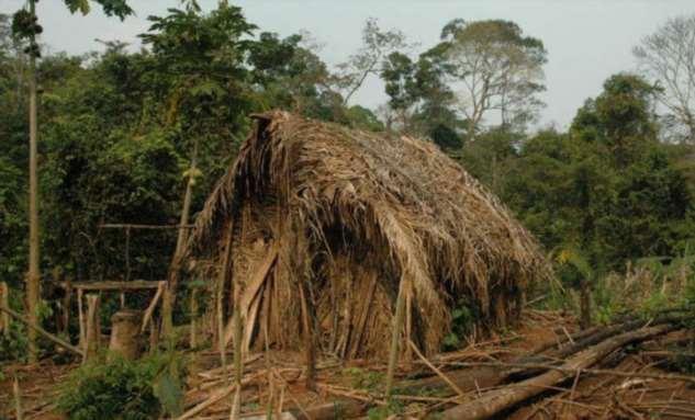 Самые изолированные племена в мире: пожизненно на карантине Интересное