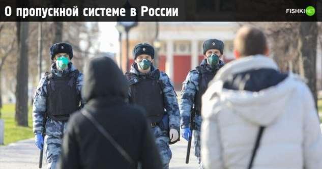 Как оформить пропуск на время «некарантина» в Москве и прочих регионах России  Интересное