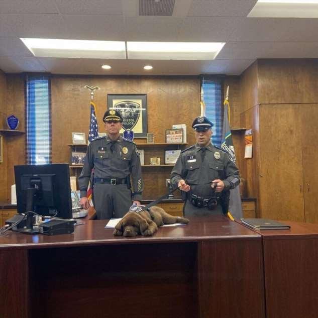 Новоиспечённый сотрудник полиции проспал всю церемонию приведения к присяге  Интересное