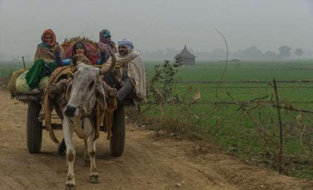 Сельская Индия до карантина Интересное
