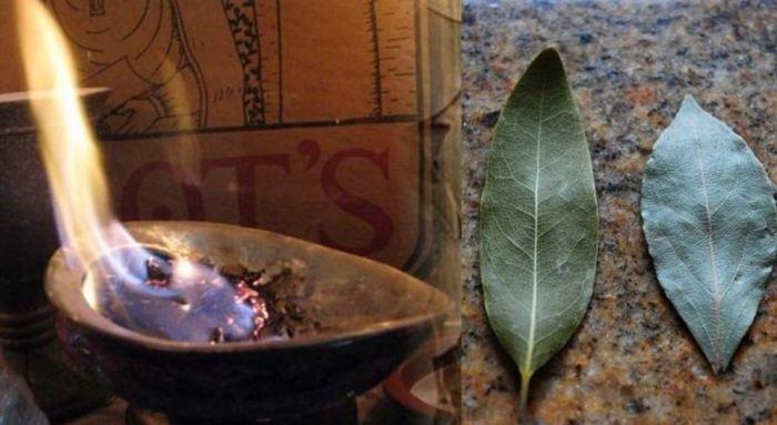 3 «народных» способа, как избавиться от неприятного запаха в туалете без освежителя и прочей химии Интересное