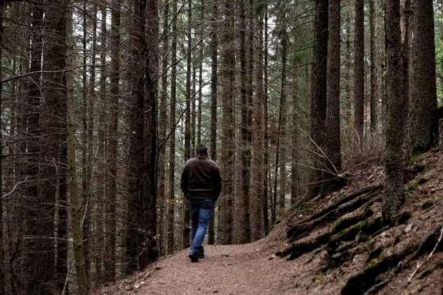Чего нельзя делать в лесу, если вы заблудились