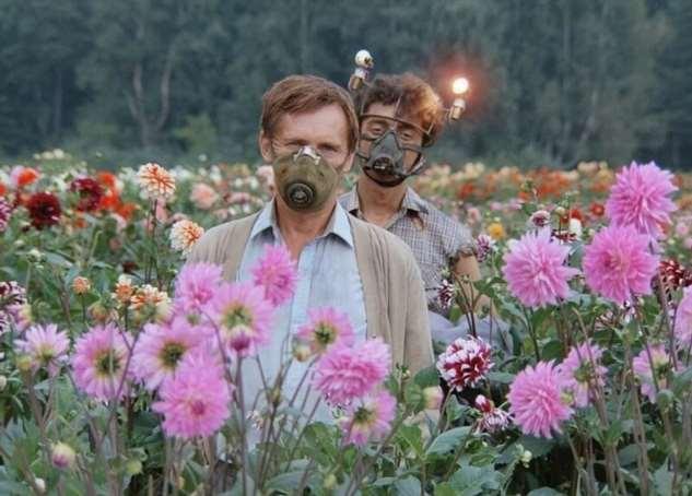 О чем на самом деле фильм «Кин-дза-дза»?